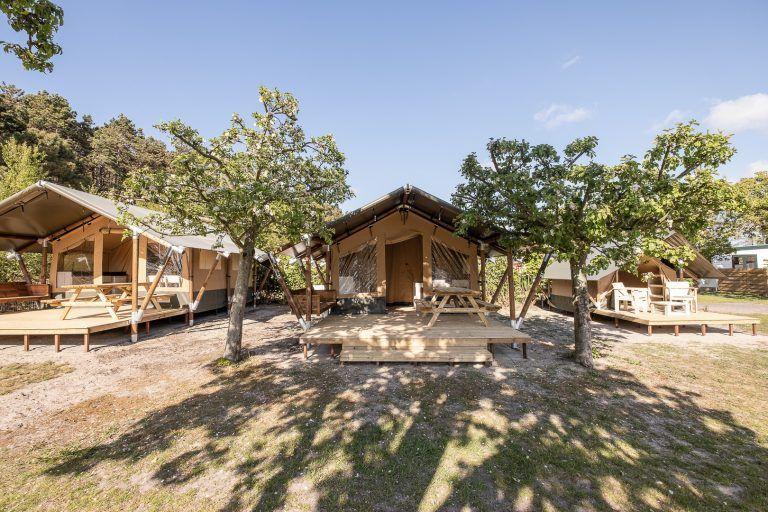 Safaritenten op Camping Landzicht_